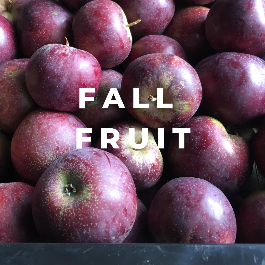 Fall Fruit Share