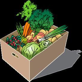 Spring Vegetable Share