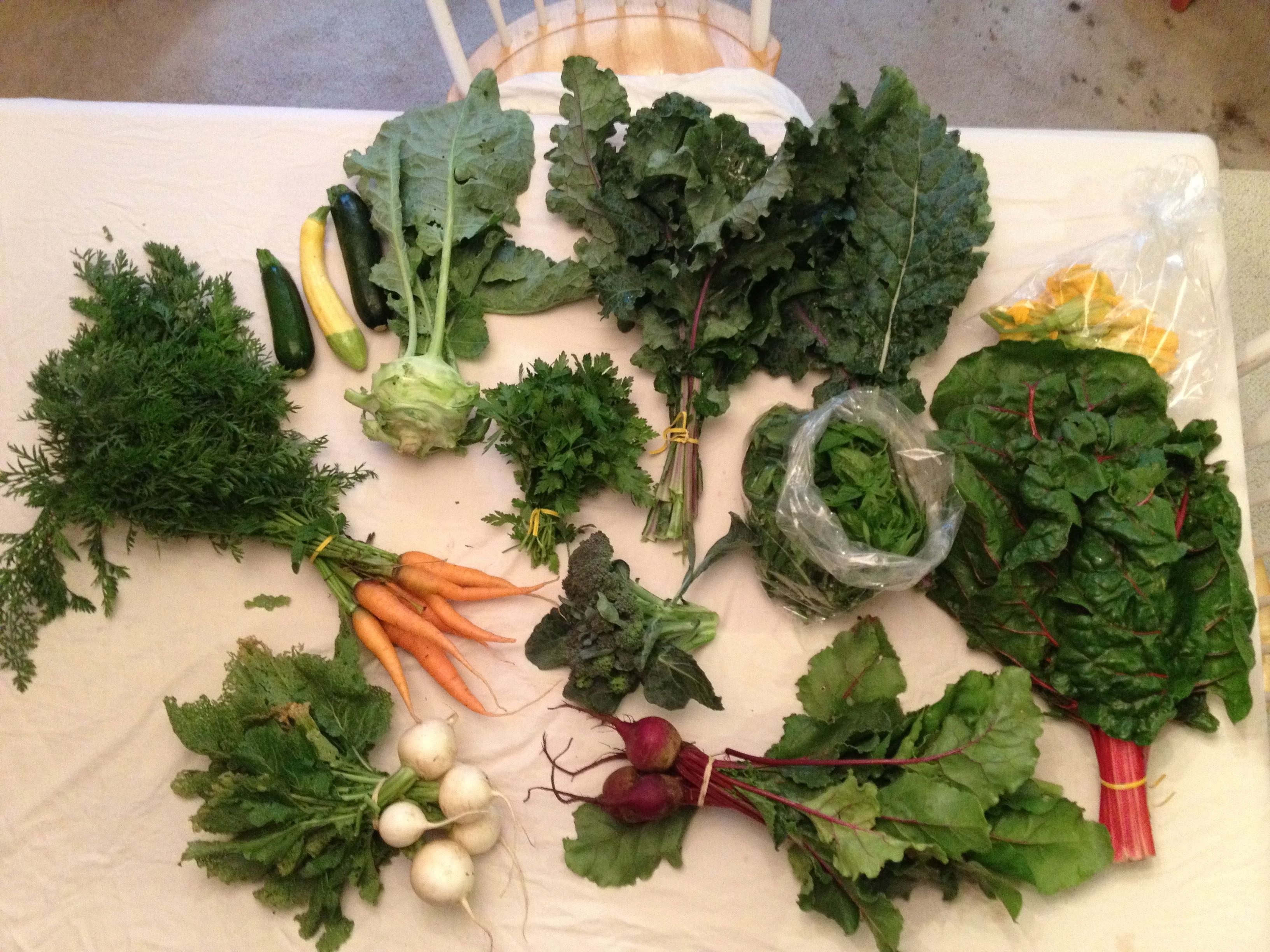 Family Vegetable Share - SOLD OUT