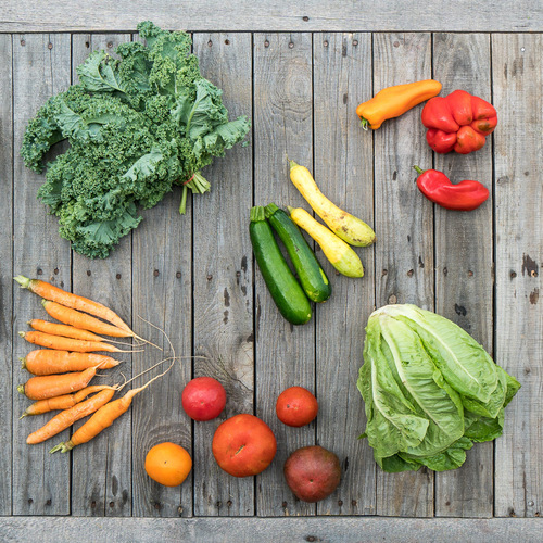 Fall Vegetable Share - Small