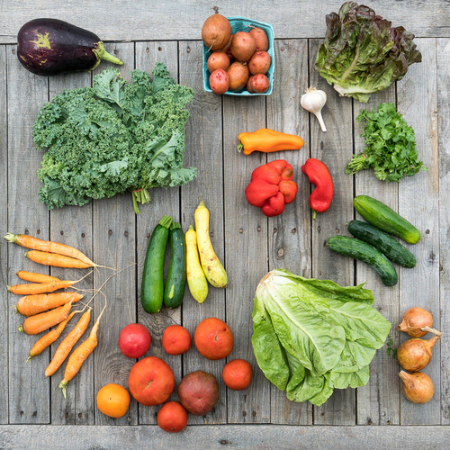 Fall Vegetable Share - Large