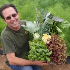 Medium Vegetable Share