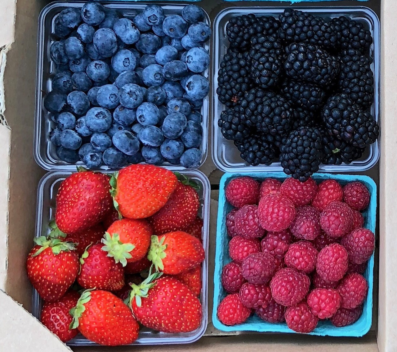 Summer Fruit Share (4 Units)