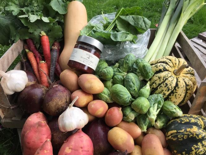 Deep Winter Vegetable Share