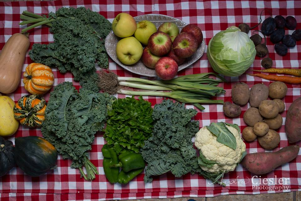 2019 Fall/Winter Vegetable Mini-Share