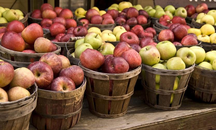 2019 Fall/Winter Apple Share - Full Peck