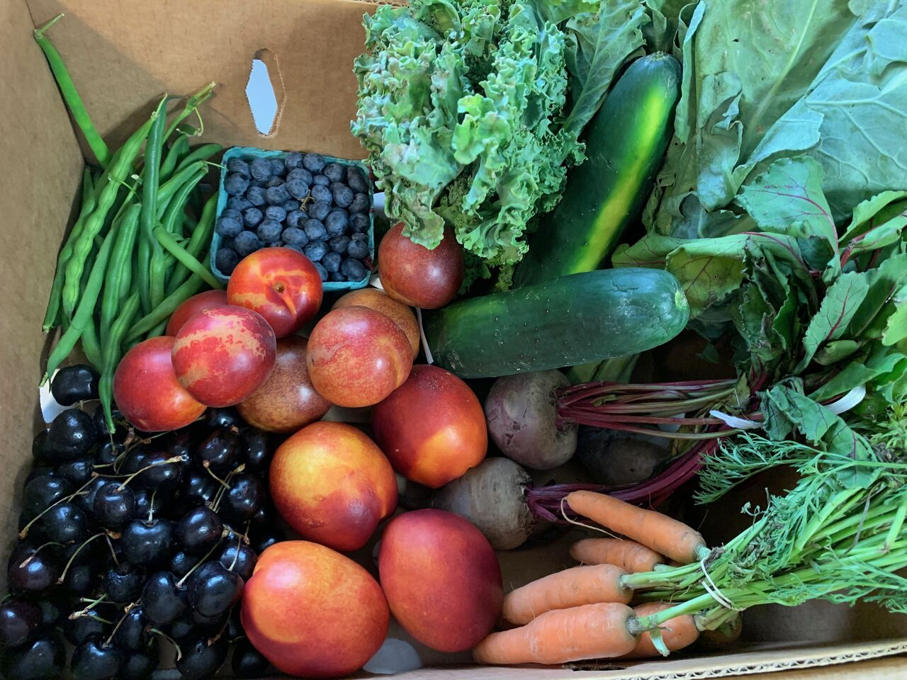 Large Produce Share