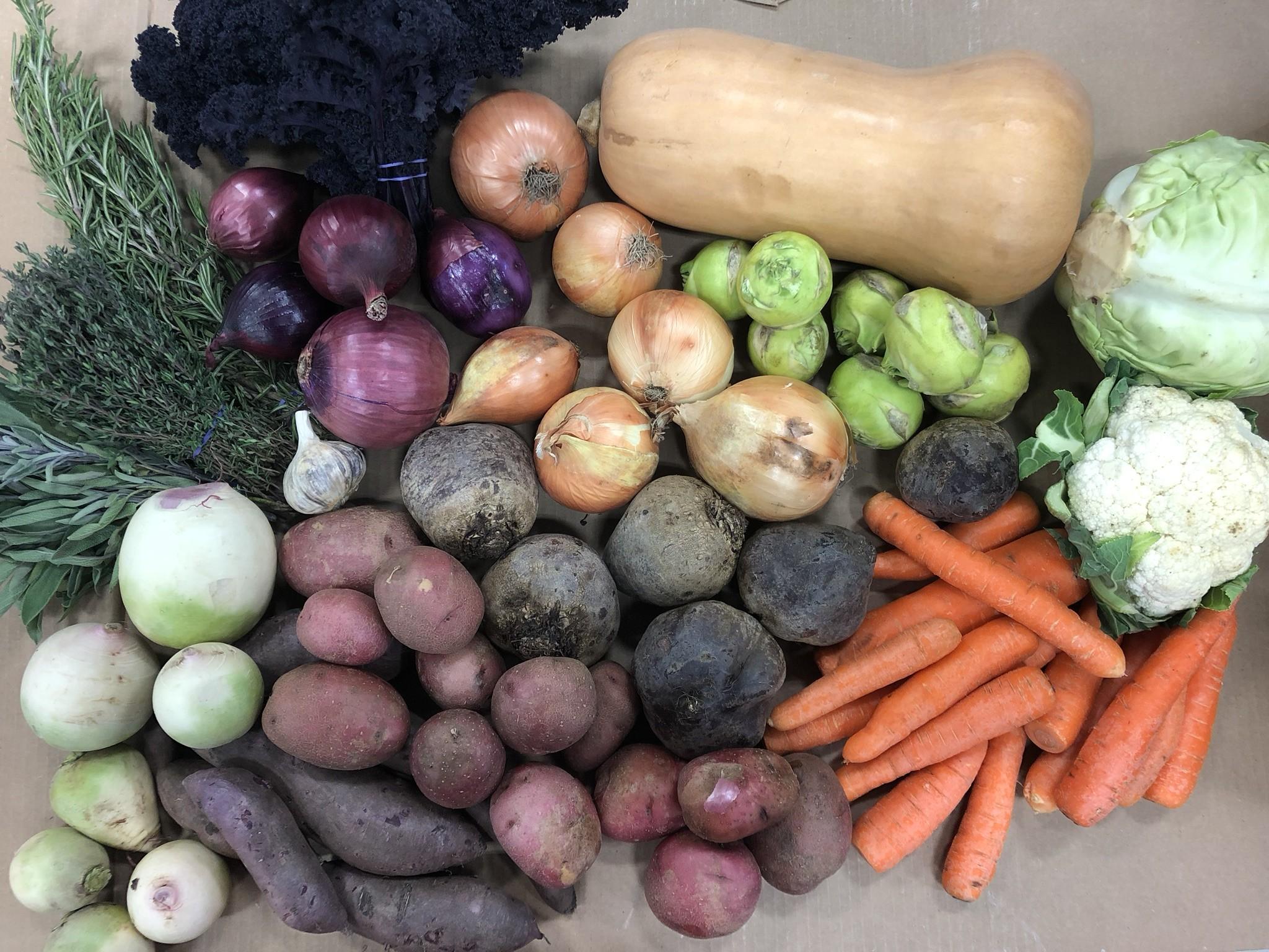 Thanksgiving Vegetable Share