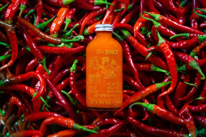 1 Bottle of Sun Sauce