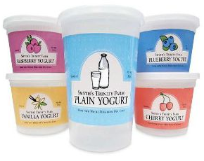 Plain Yogurt - Traditional