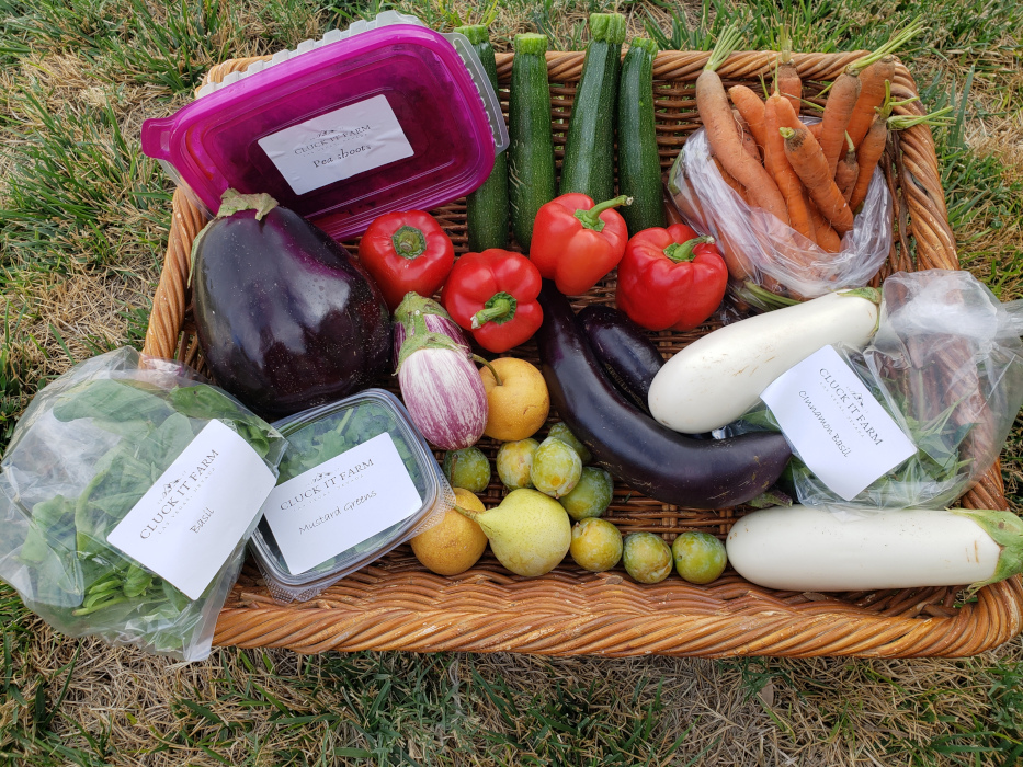 Farm Produce Share: Full Share