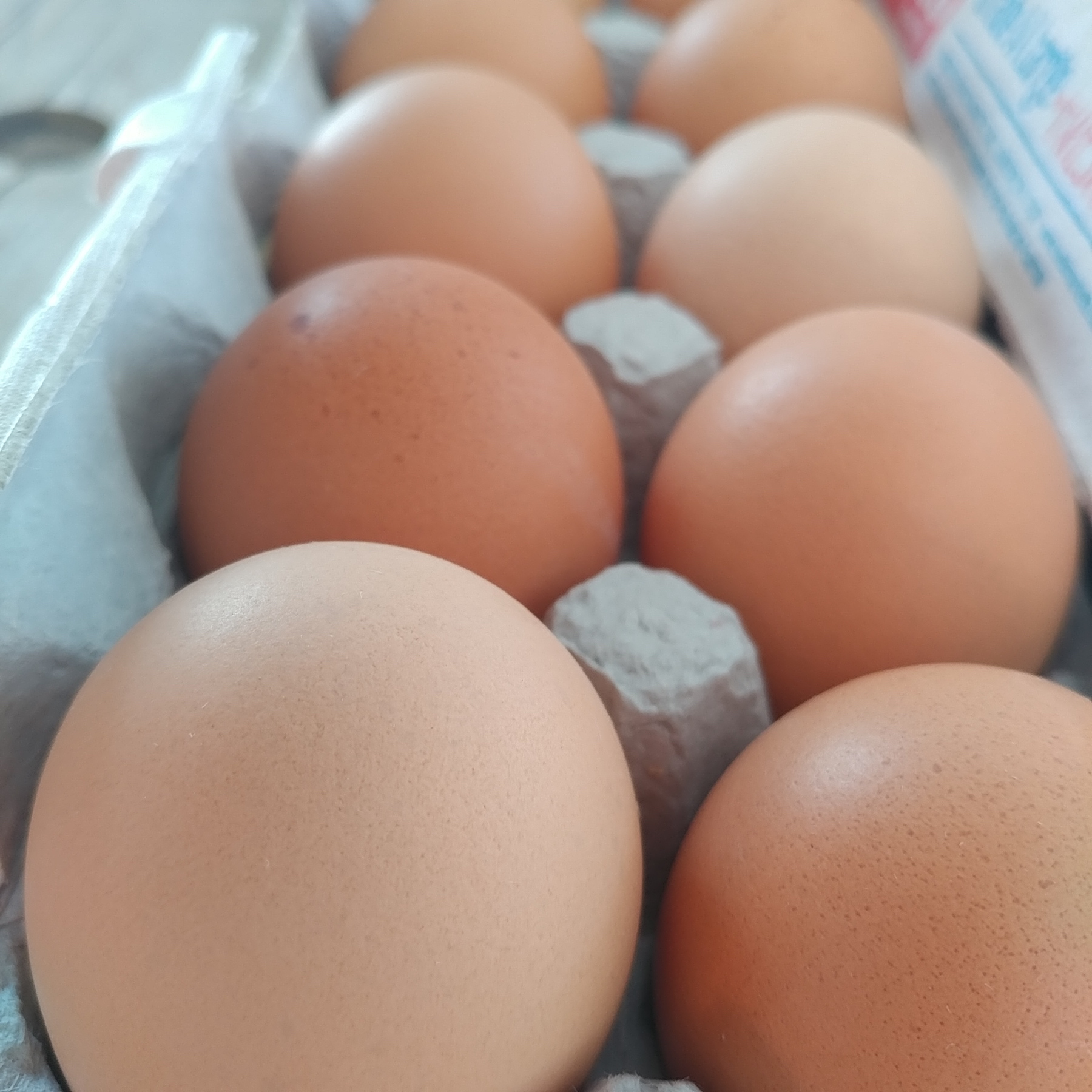 Egg Share, 1 Dozen