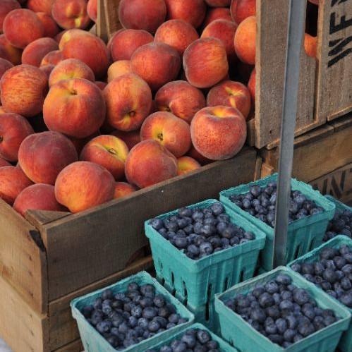 Summer Fruit Share