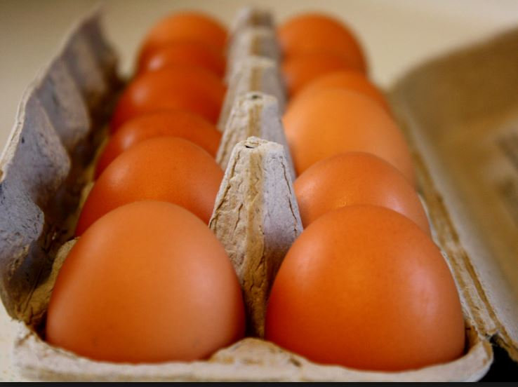 Winter Egg Share - SOLD OUT!