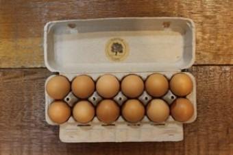 Egg Share: One Dozen Eggs