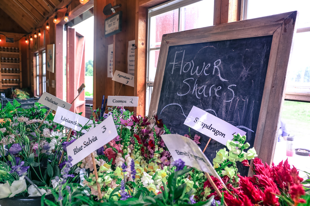 Flower Share - farm pick up only