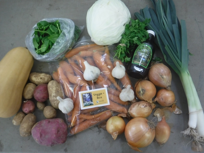 Winter Veggie Box - Family