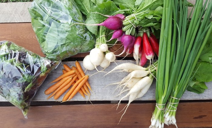 Summer Small Vegetable Share