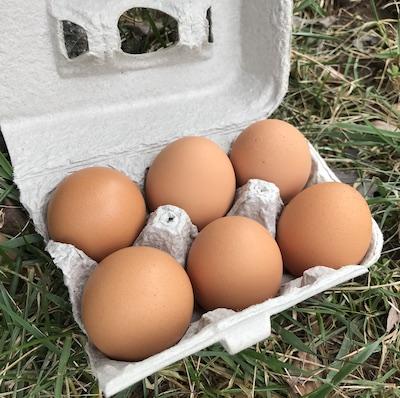 Autumn Egg Share - Half dozen