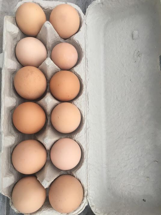 Egg Share: Dozen Eggs