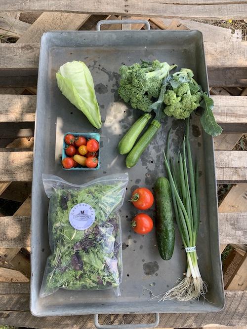 Small Veggie Share