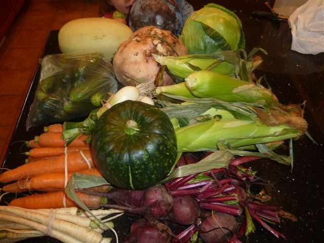 Personal Vegetable Share