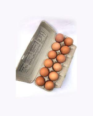 Half Dozen Eggs (20 Weeks)