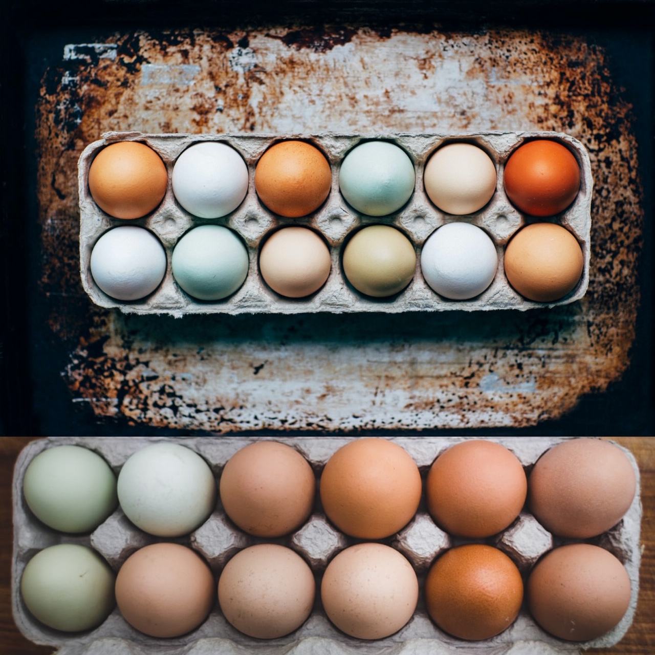 Farm Fresh Eggs (Organic Free Range Mother Earth Fed) One Dozen