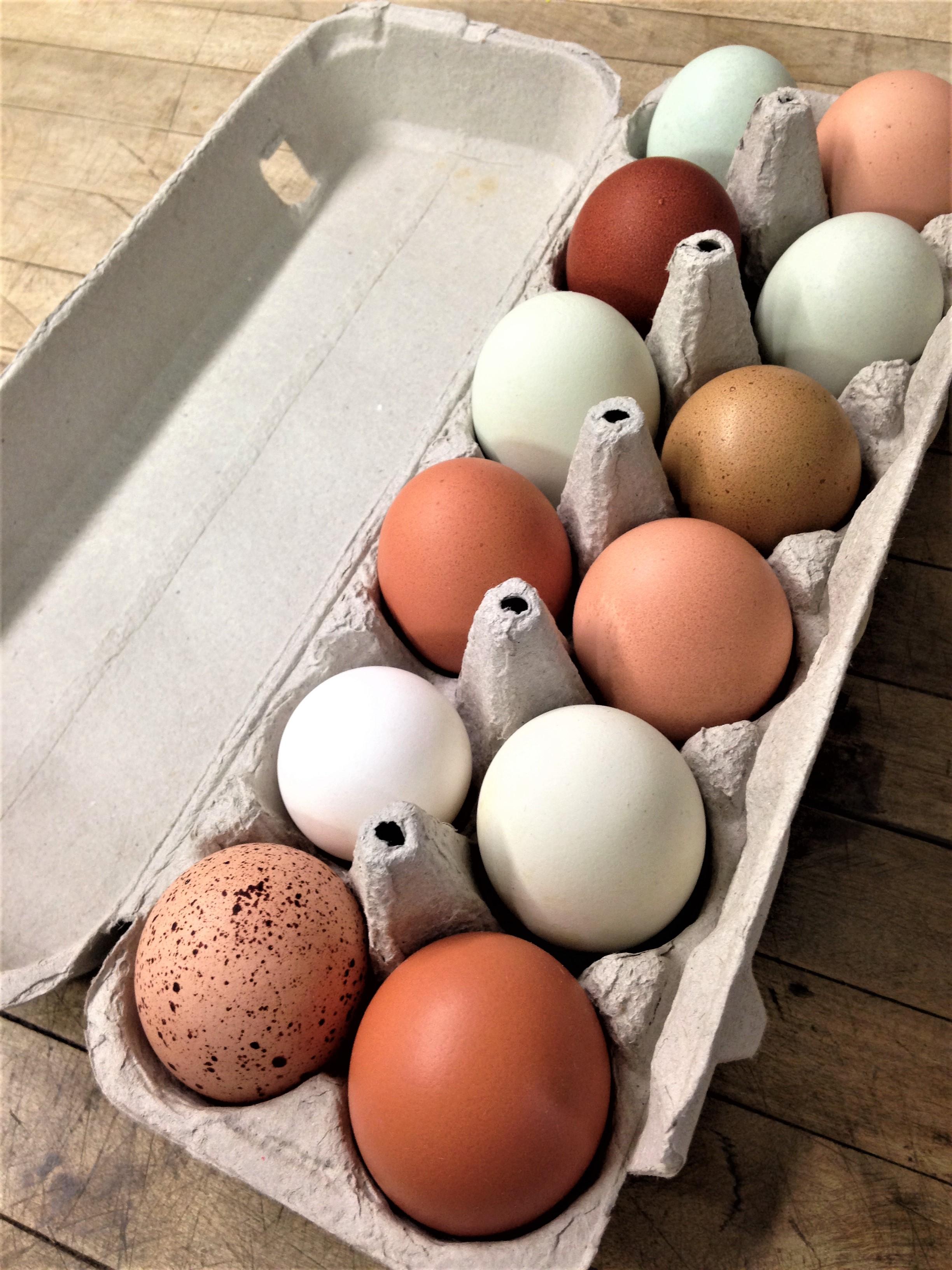 One Dozen Duck Eggs