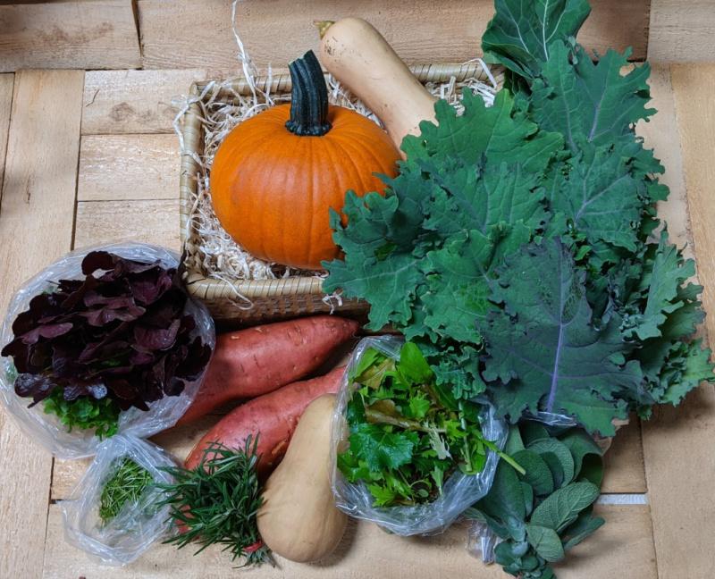 November Vegetable Share