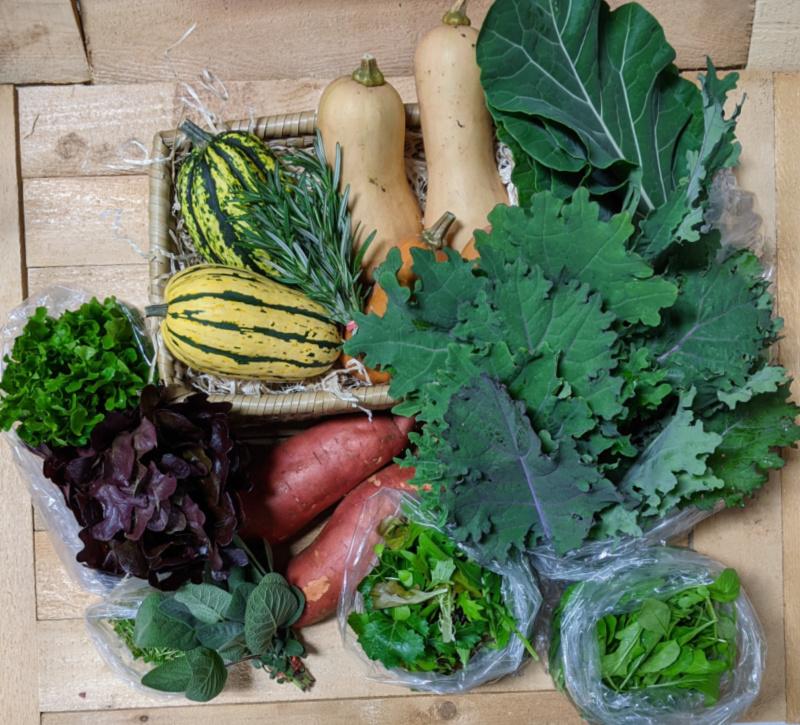 December Vegetable Share