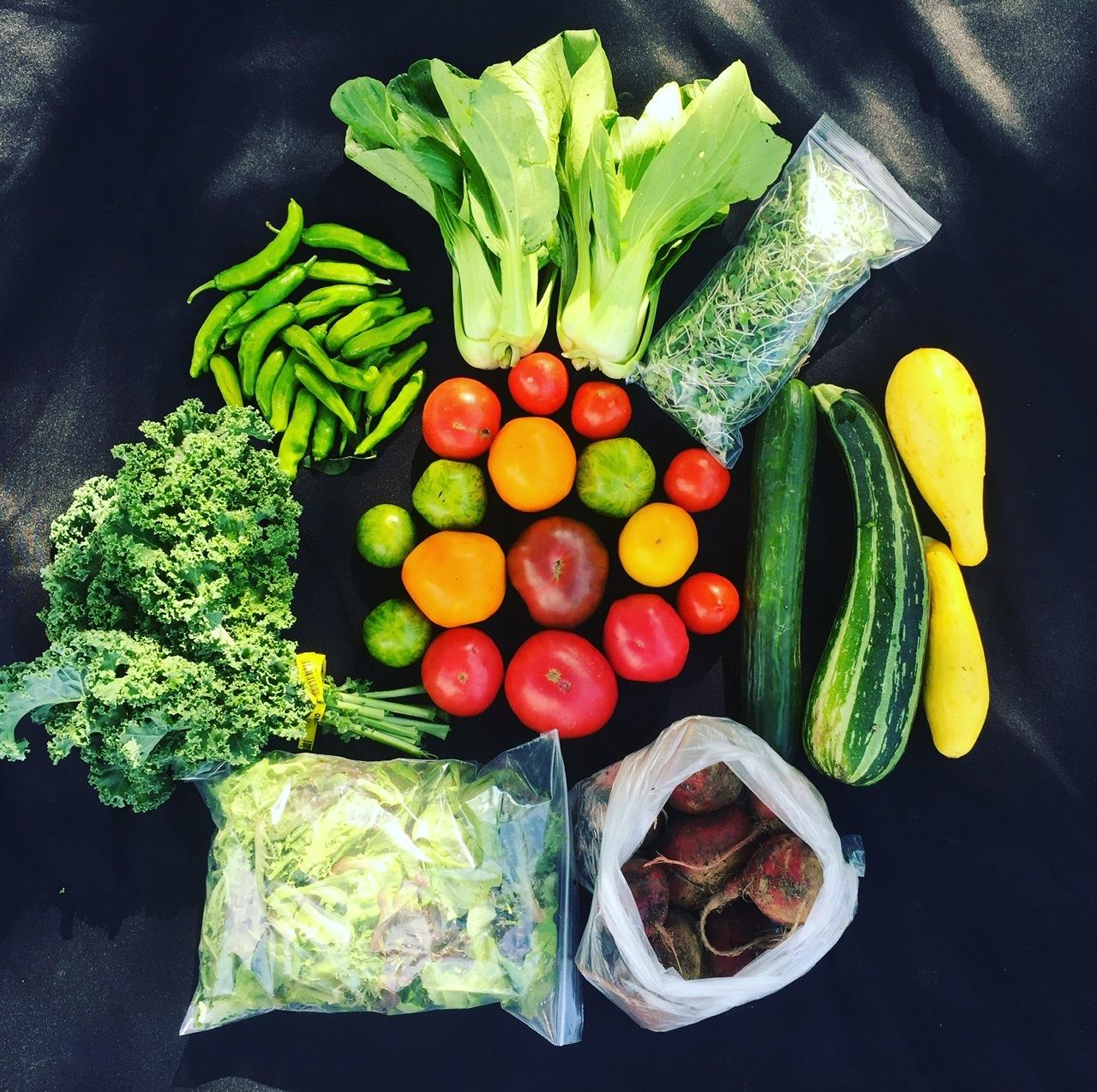 Veggie Lover's- Large Share
