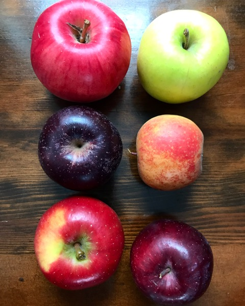 Winter Apple Share