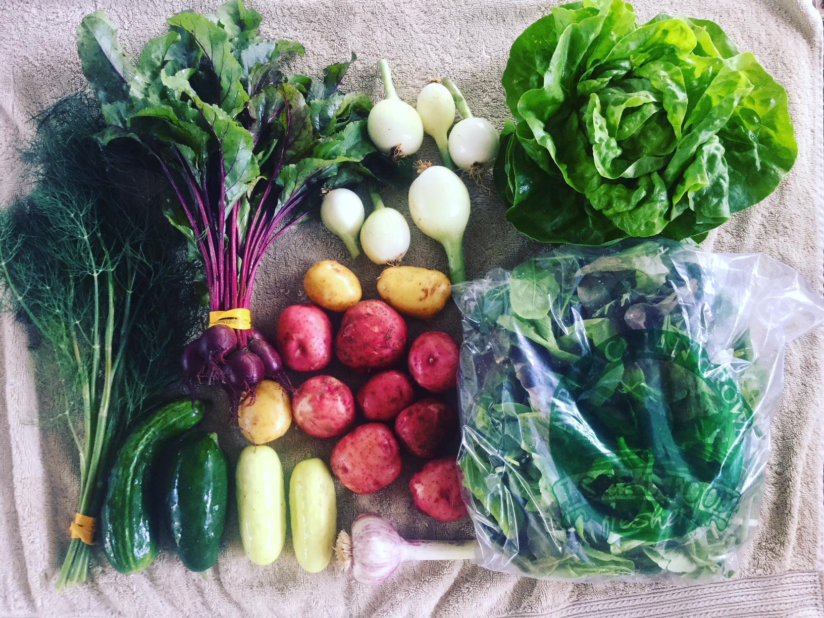 Large Veggie Share