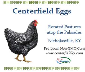 Centerfield Farm Large Eggs