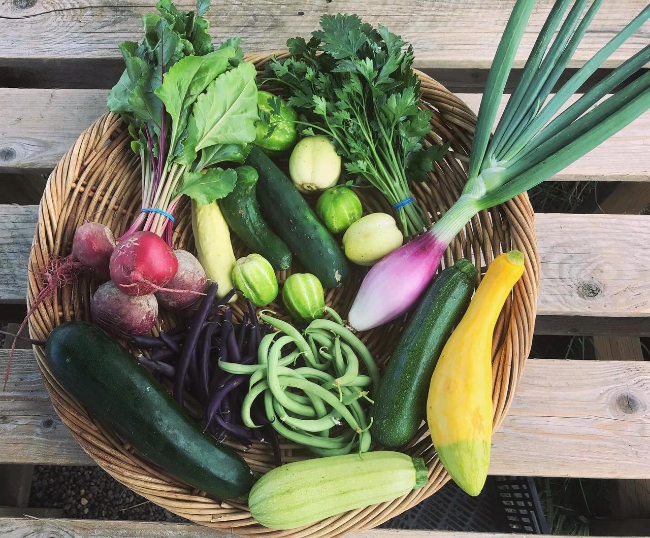 Veggie Lover Share