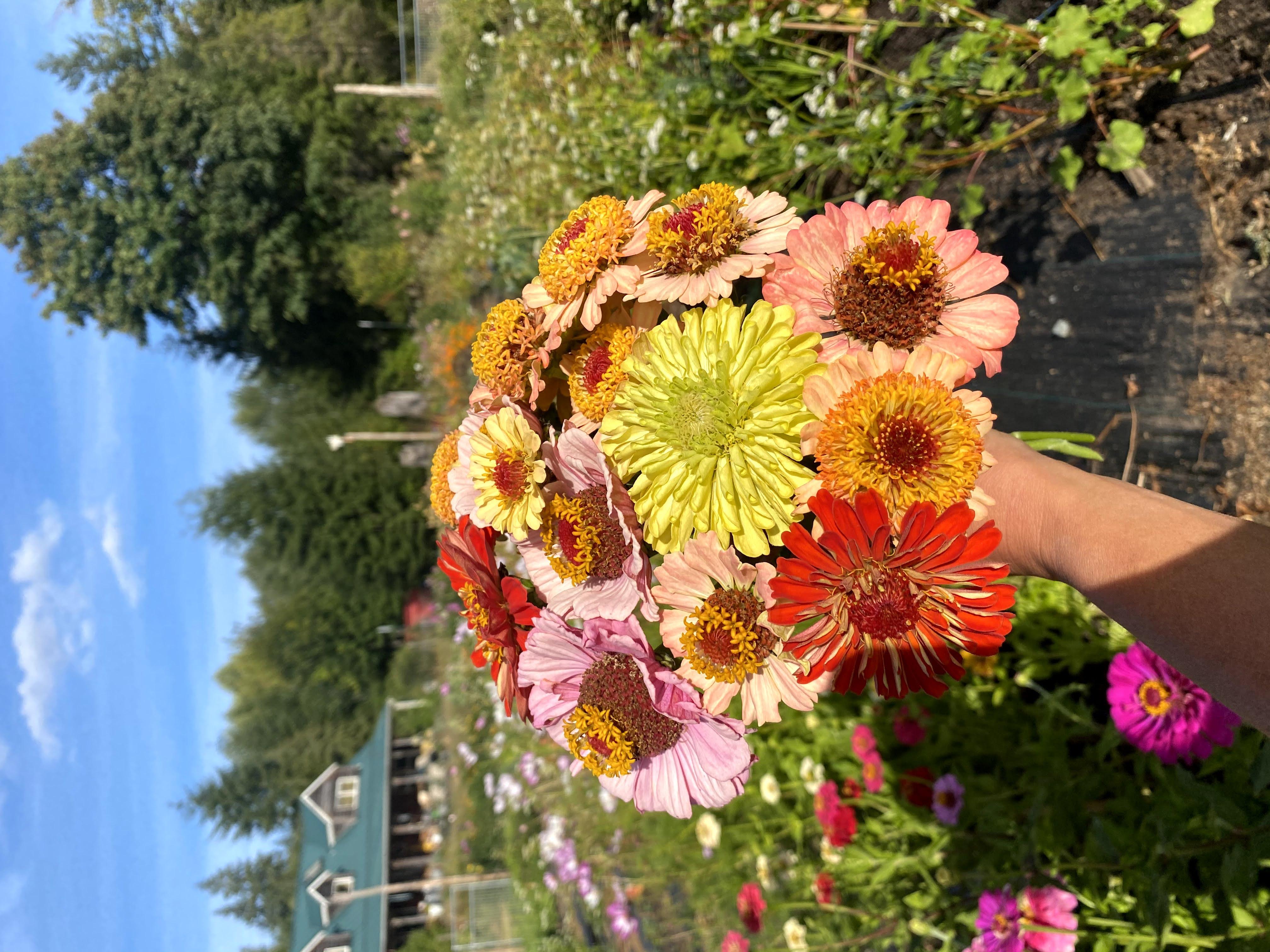 Perigee Farm Flower Share