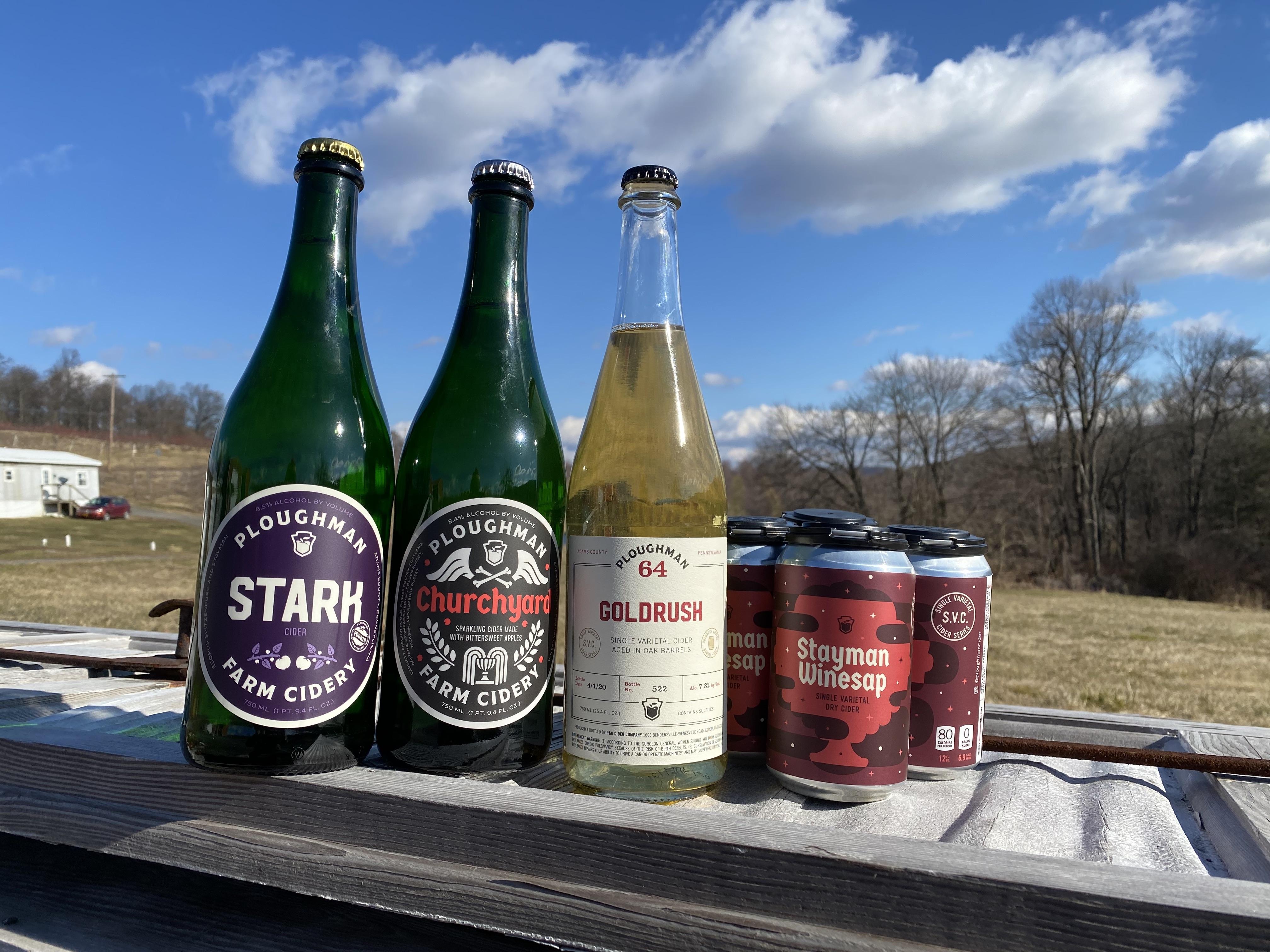 Medium Cider Share