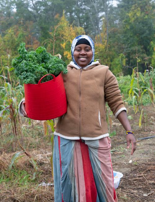 Standard VegetableShare