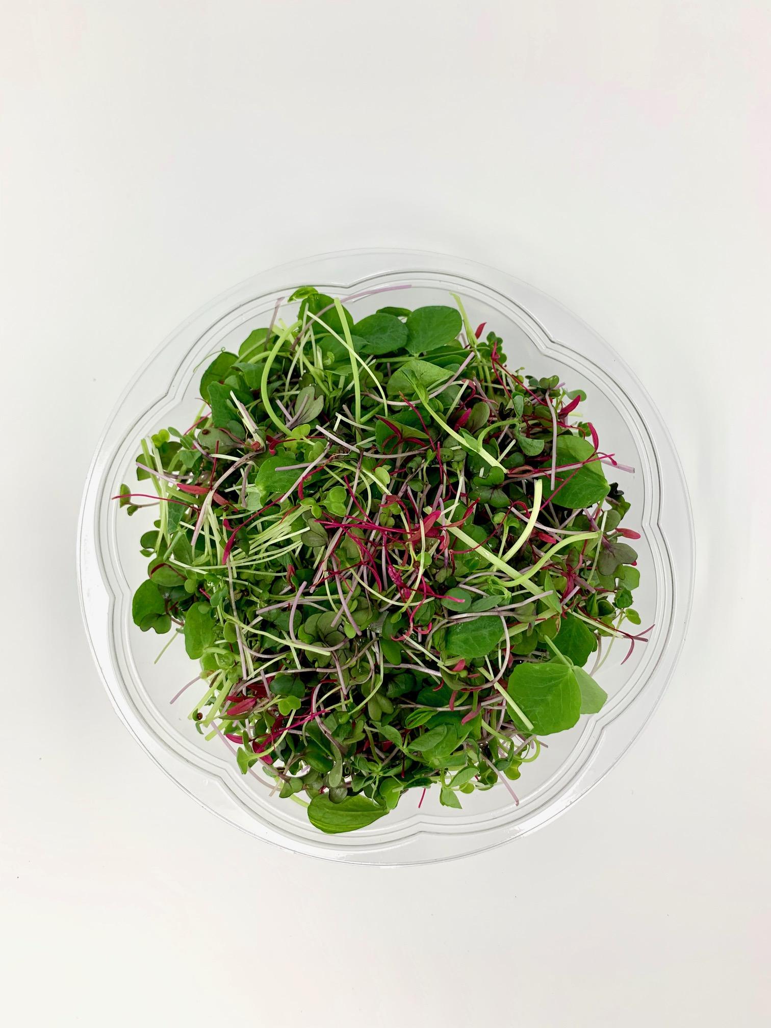 Small Superfood Salad Bowl