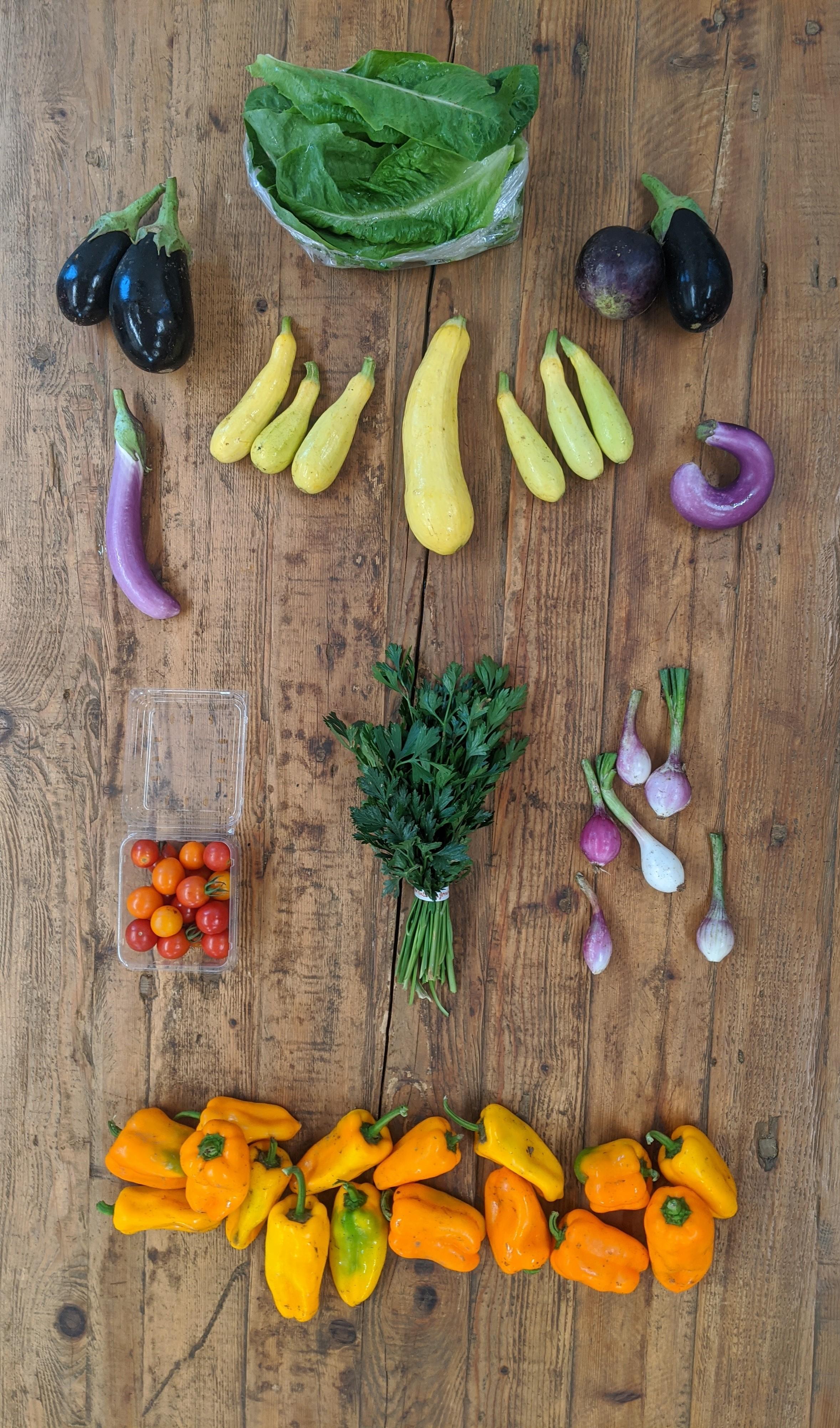 Summer Organic Veggie Share
