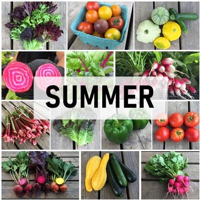 Large Summer Veggie Share
