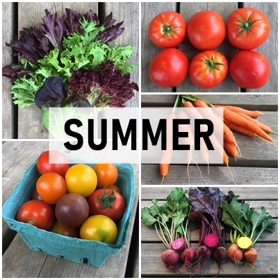Small Summer Veggie Share