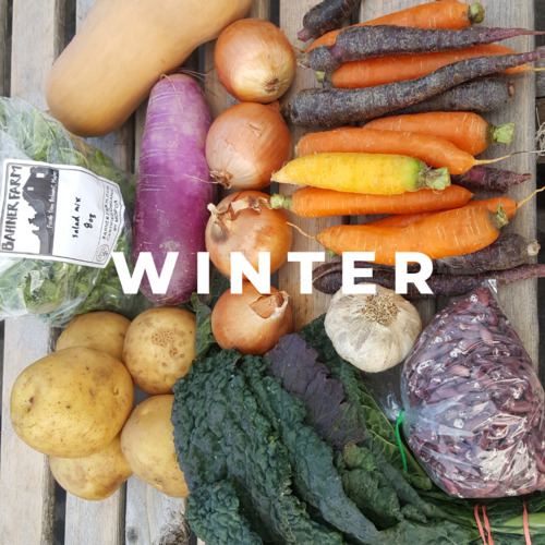 Winter Bounty