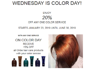 20% OFF ONE COLOR Wednesdays @ blue complete hair salon
