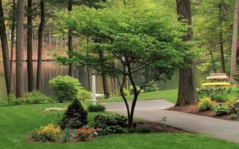 Garden and Landscape Design Services (Consultation, Design and Plantings)