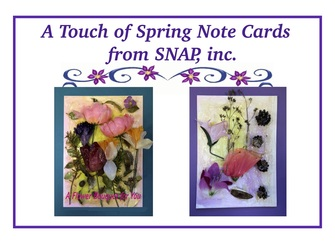 A Touch of Spring SNAP Notecards