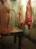 pigs2small.jpg