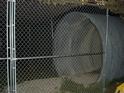 TunnelSMALL.jpg