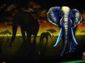 elephantsinwild.jpg